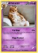 M Fatcat EX