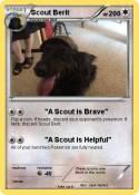 Scout Berit