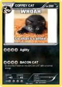 COFFEY CAT