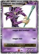 magicien des