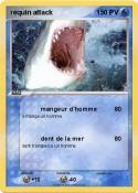 requin attack