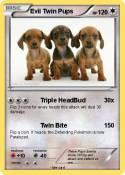 Evil Twin Pups