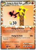 Kung fu Stick
