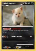 Light kitten
