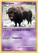 chien bison