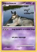 loup-schnauzer