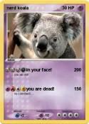 nerd koala
