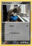 chat flingeur