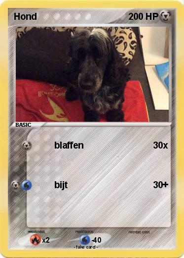 Pokemon Hond 18
