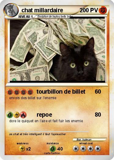 Pok mon chat millardaire tourbillon de billet ma carte - Faire fuir les chats ...