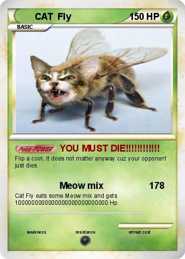 Pokémon CAT Fly - YOU MUST DIE!!!!!!!!!!!! - My Pokemon Card