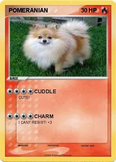 pomeranian language pok 233 mon pomeranian cuddle my pokemon card 535