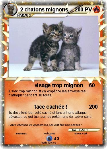 Pokémon 2 chatons mignons - visage trop mignon - Ma carte Pokémon